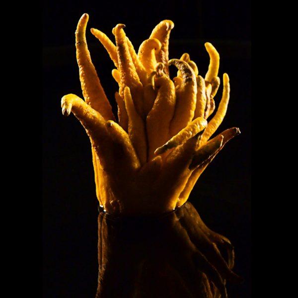 0 Hand